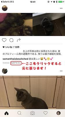 インスタグラム.instagram,インスタグラム翻訳機能,インスタ翻訳